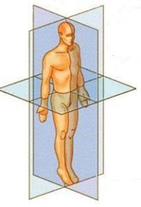 The Quadrant Theory
