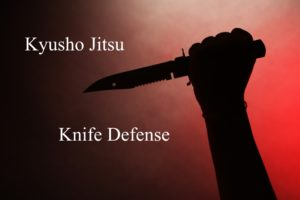 Kyusho Knife Defense eBook