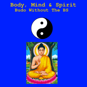* Body - Mind - Spirit The Journey of Budo without the BS